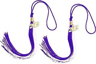 Makhry 2pcs 15.7 inches/41cm Handmade Silk Graduation Honor Tassel with 2019 Year Charm for Graduation Cap,Graduation Gift,Souvenir (2, Purple&White)