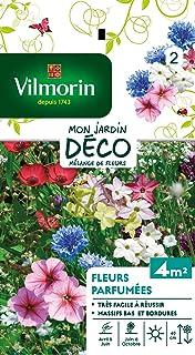 Vilmorin 5862942 Fleur parfumée, Multicolore, 90 x 2 x 160 cm