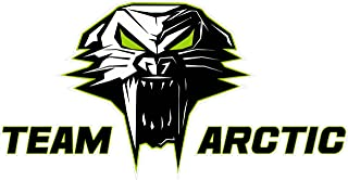 Nostalgia Decals Team Arctic Cat Version 3 Large 12 inch Decal Fast from The United States