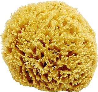 Esponja de mar natural en forma de panal sin blanquear - fuerte y duradera - 100% natural y hipoalergénica - para bebés, niños y adultos - utilizada en baños, exfoliantes, maquillaje, arte, mascotas