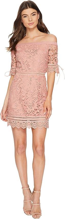 Off the Shoulder Lace Trim Dress
