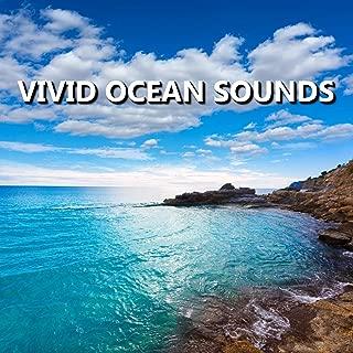 Hot California Beach Sounds