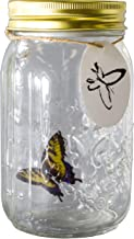 Science Purchase Animated Butterfly in a Jar Yellow Swallowtail Figurine