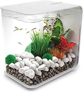 Best betta fish tanks target Reviews