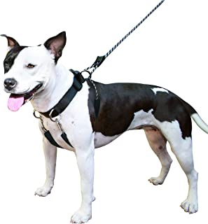 Sporn Dog Halter for Large Breed Dogs – Non Pull Humane Pet Training Harness – Reflective Pet Collar Halter with Detachable Restraints - Patented Dog Pull Control Technology – Medium - Black