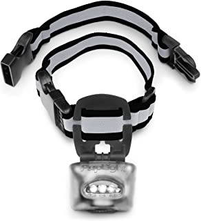 Best dog collar embellishments Reviews