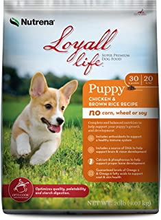 nutrena loyall dog food