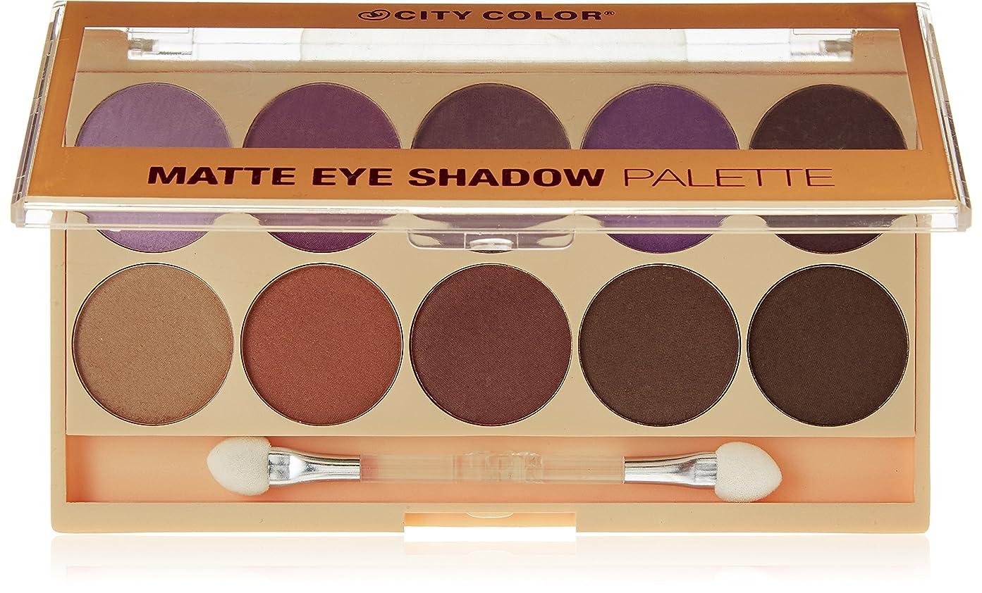 高架長老無力CITY COLOR Matte Eye Shadow Palette (並行輸入品)