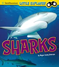 Sharks (Little Scientist)