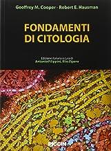 Scaricare Libri Fondamenti di citologia PDF