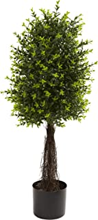 Nearly Natural 5413 Ixora Topiary UV Resistant Tree, 35-Inch, Green