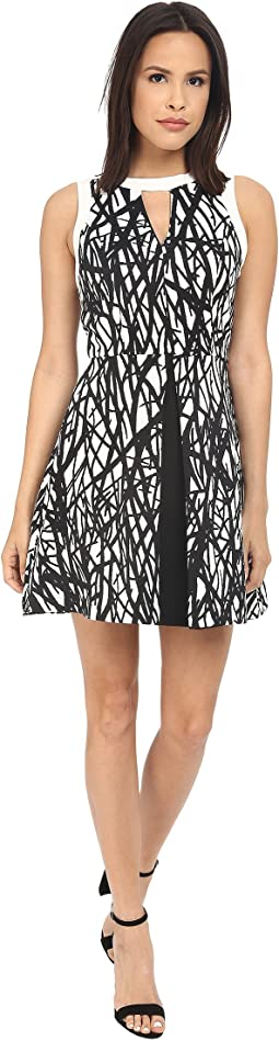 Printed with Solid Color Block Fit and Flare Dress