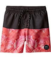 Munster Kids - Spillage Boardshorts (Toddler/Little Kids/Big Kids)