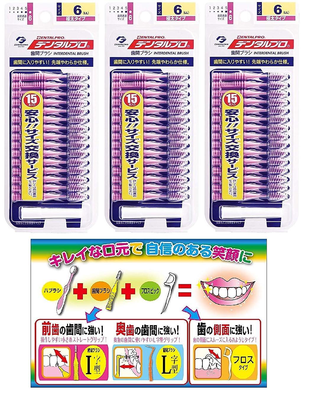行動衝撃接尾辞DP歯間ブラシ15Pサイズ6(LL)3P+リーフレット