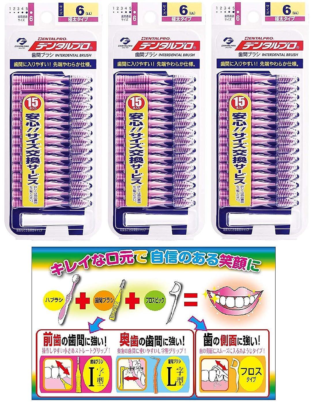 しばしば帰る真夜中DP歯間ブラシ15Pサイズ6(LL)3P+リーフレット