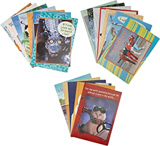 Leanin Tree Laugh Out Loud Greeting Card Assortment