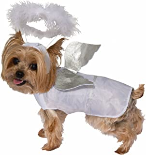 Best angel pet costume Reviews