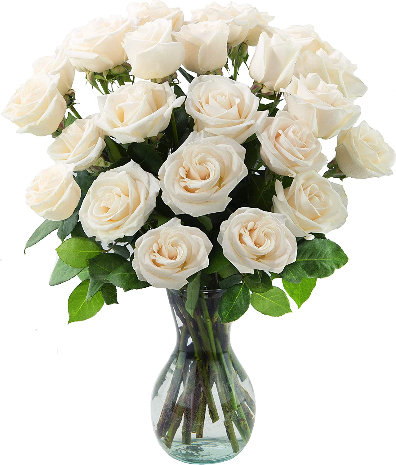 Super popular specialty store Delivery by Monday September 27th Cu Arabella Fresh Bouquets Daily bargain sale 24