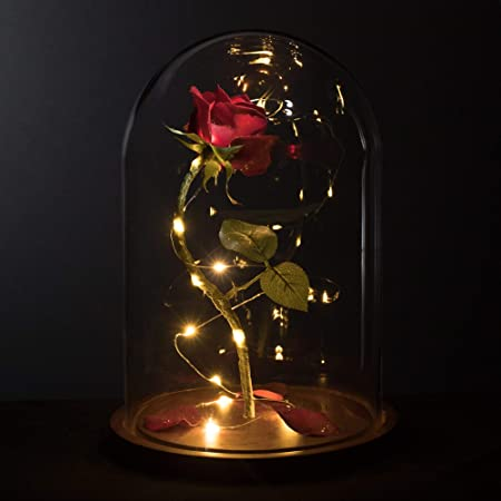 """MagicPrincessWhitney Made in USA Enchanted Red Rose Life-Sized 13"""" LED Beauty and The Beast Rose in Glass Dome Belle Wedding Valentine's Day Christmas Mother's Quinceanera Magic Princess Whitney"""