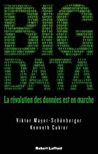 Big Data (French Edition)