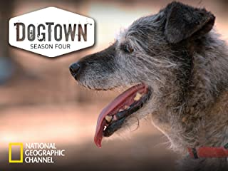 DogTown Season 4