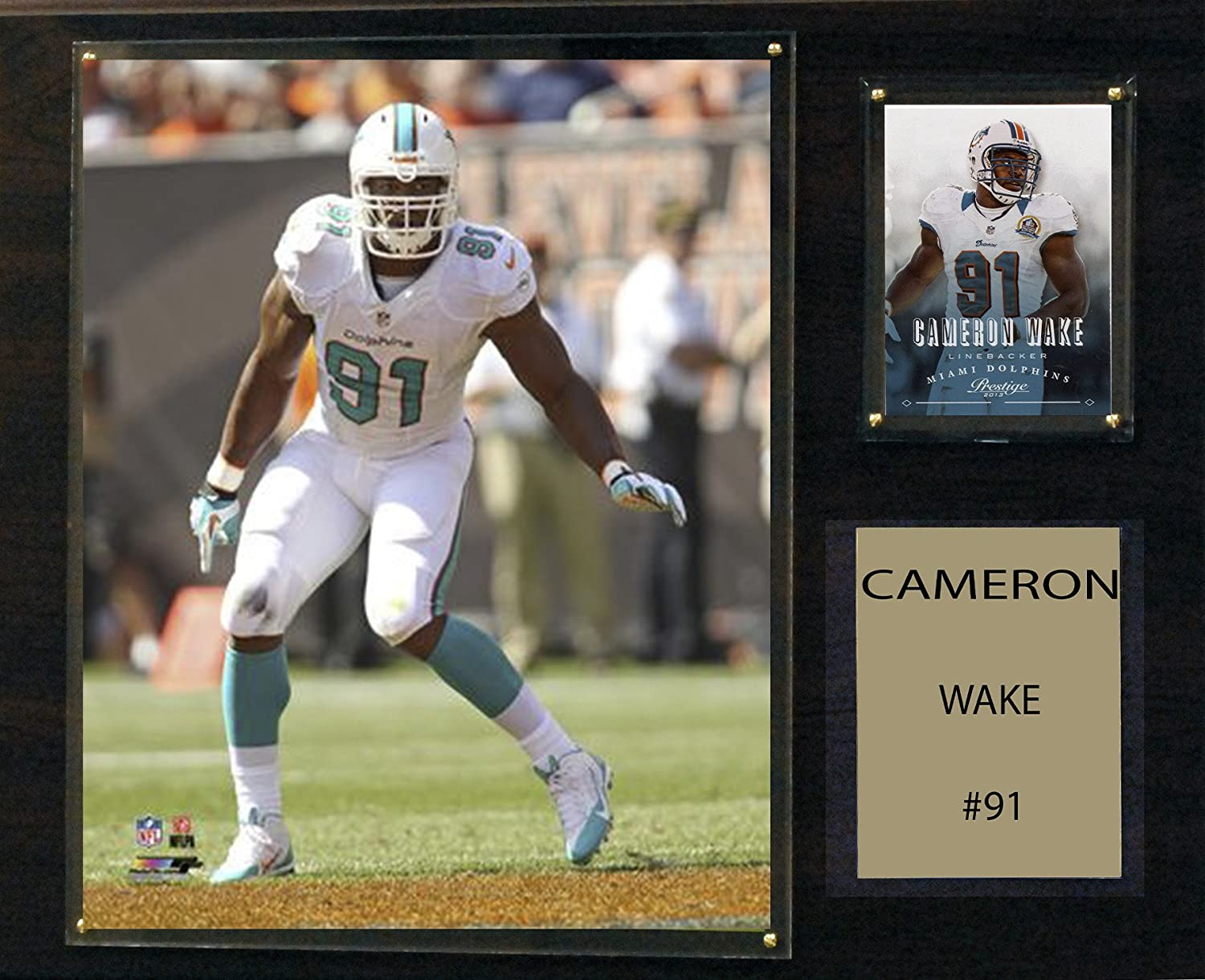 NFL Miami Dolphins Cameron Wake Player Plaque, 12 x 15Inch