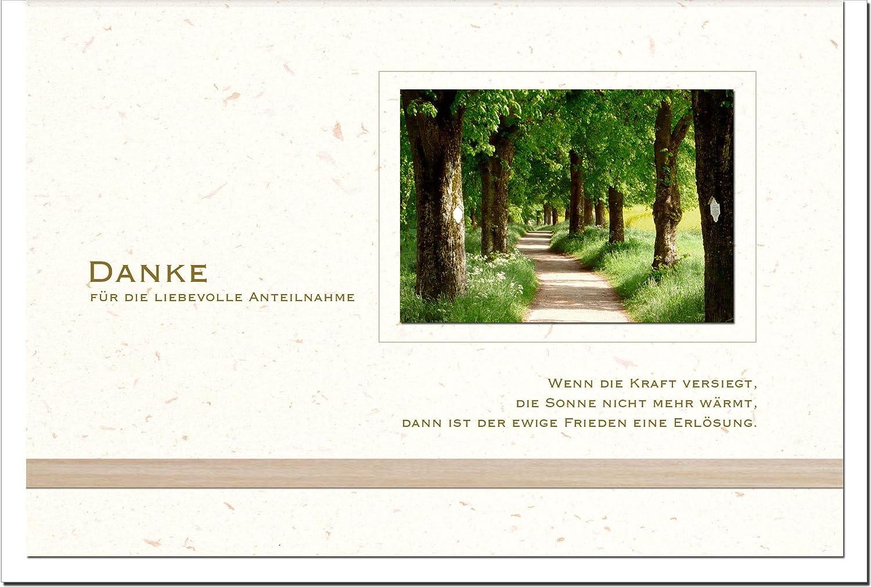 MetALUm Danksagungskarten TRAUER   Waldweg   25 Karten   1525006S B00JBPU636 | Reparieren