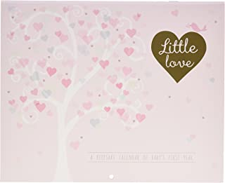 C.R. Gibson Gold and Pink Baby Calendar Family Tree, 11'' W x 18'' H