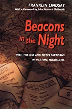 Best beacon in the night Reviews