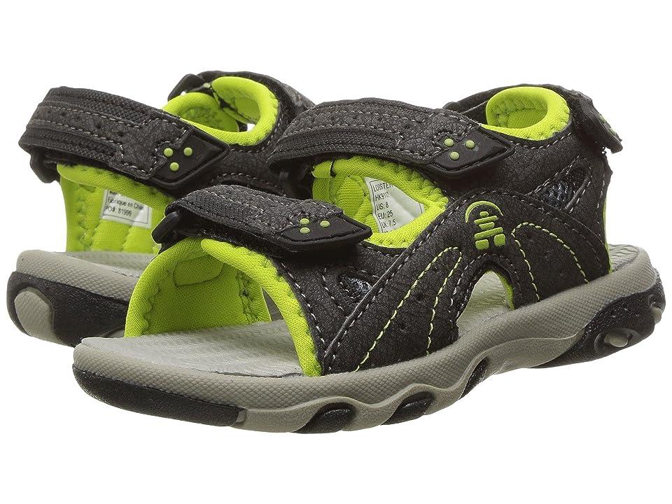 Kamik Kids Lobster (Toddler) (Black/Lime) Boys Shoes