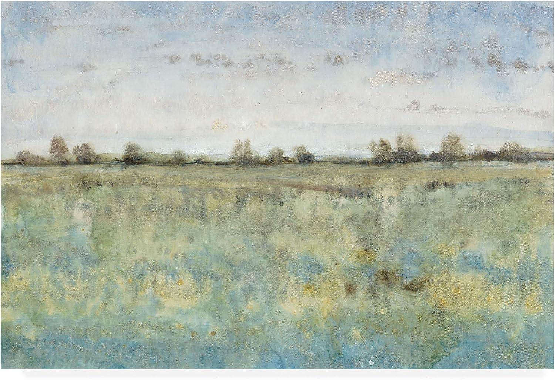Trademark Fine Art Grazing Land III by Tim Otoole, 12x19