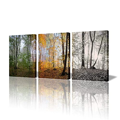 Nature Wall Art Set Amazon Com
