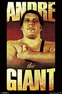 Best andre the giant poster Reviews