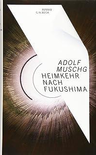 Heimkehr nach Fukushima: Roman