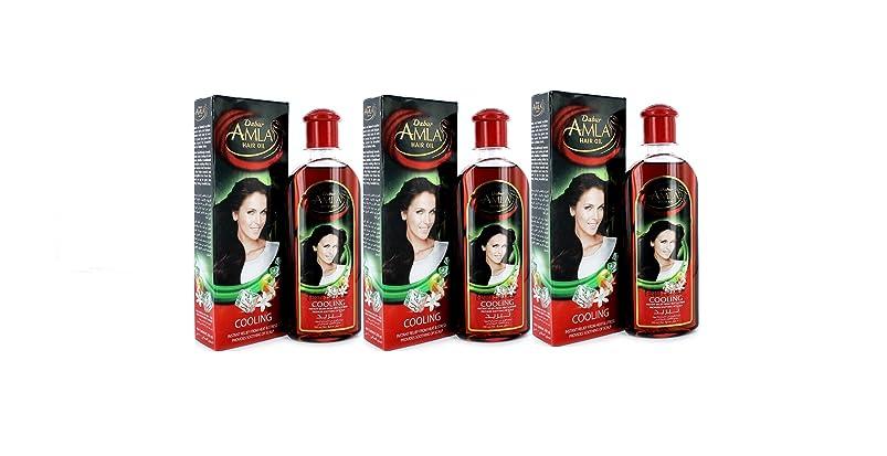 絶望的な感じる塩辛いDabur Amla Hair Oil 200 ml by Dabur [並行輸入品]