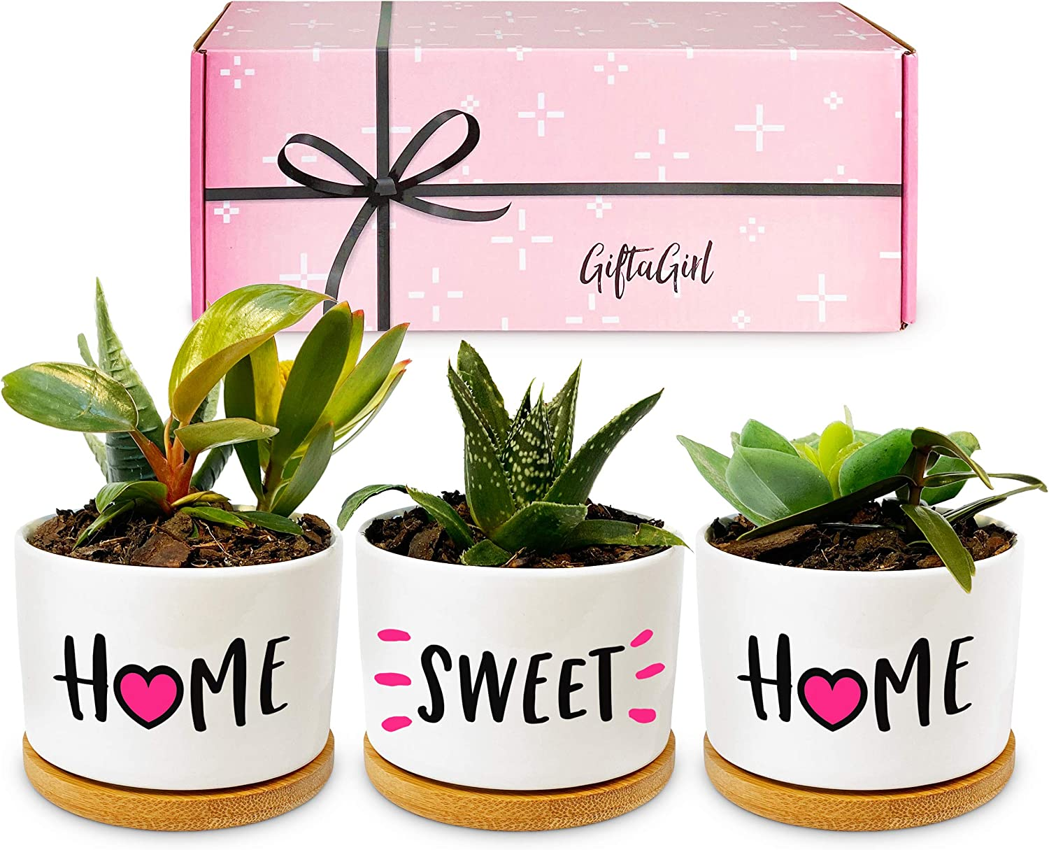 GIFTAGIRL House Warming Presents for New Home - Housewarming Gift, Our Home Sweet Home Succulent Pots, are Ideal Housewarming Gifts for New Home, New Home Gifts for Home, House Warming Gifts New Home