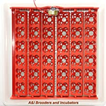 Best a&i brooders and incubators Reviews
