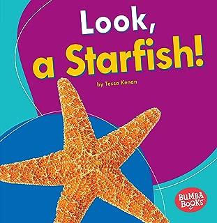 starfish for children