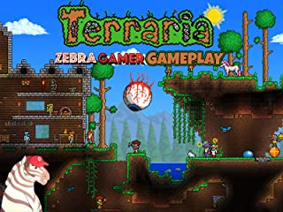Early Game Items In Terraria