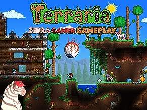 Clip: Terraria Gameplay - Zebra Gamer