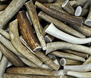Downtown Pet Supply, Antler Variety Value Pack, Deer Antler Elk Chews, All Natural Premium Long Lasting Dog Treat Chew Sticks (from The USA) - Antlers by The Pound