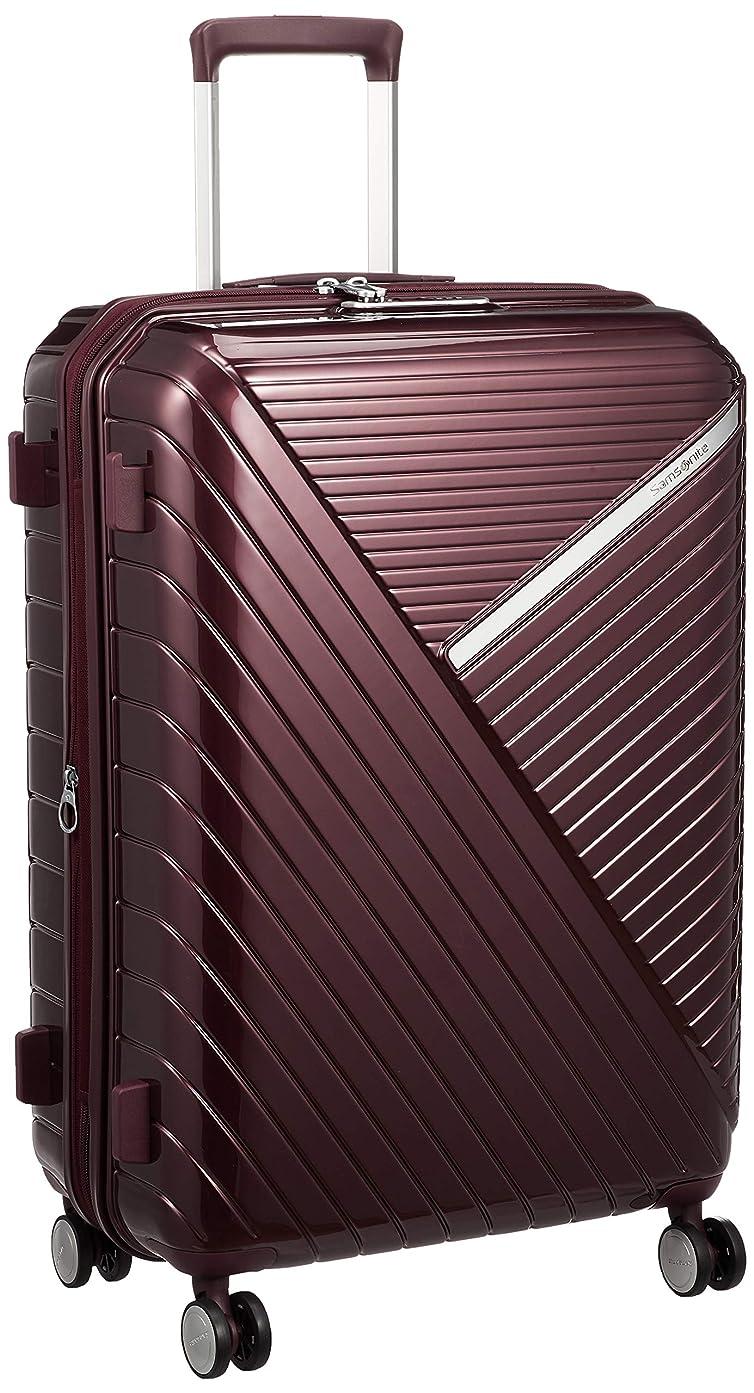 [サムソナイト] スーツケース ロベス スピナー 68/25 エキスパンダブル 保証付 73L 68 cm 4.3kg