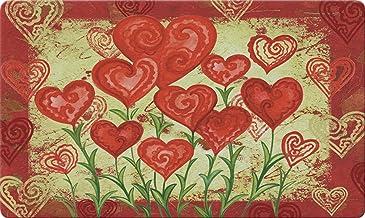 Toland Home Garden Garden Hearts 18 x 30 Inch Decorative Floor Mat Valentine Red Heart Flower Doormat - 800048