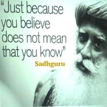 Sadhguru's Grace