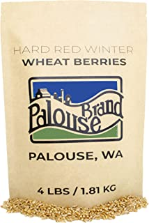 Hard Red Winter Wheat Berries • Non-GMO Project Verified • 4 LBS • 100% Non-Irradiated • Certified Kosher Parve • USA Grow...