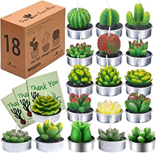 Succulent Candles Cactus Candle Cactus Tealights Candles(18 Styles,3 Thanks Cards&Gift Boxed) Delicate Succulent Decorative Tealights Wedding Favors Party Return Gifts Housewarming Favors for Guests
