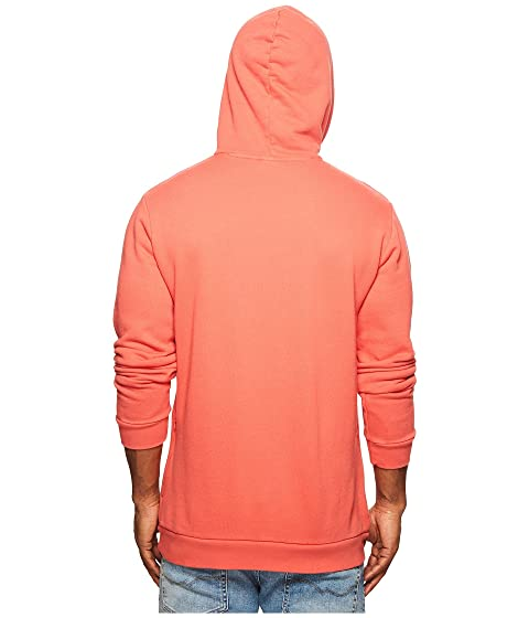 Trefoil Originals Hoodie Warm adidas Up 5Ffw0qdxBq