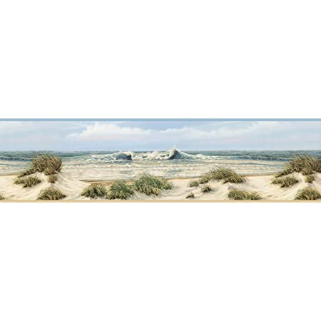 Chesapeake Dlr53611b Falmouth Beige Dunes Wallpaper Border Amazon Com