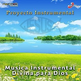 Musica Instrumental Divina para Dios