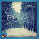 My Snow HD-View the beautiful snow in animation